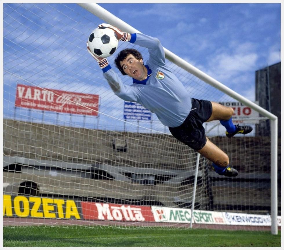 Un plastico tuffo di Dino Zoff