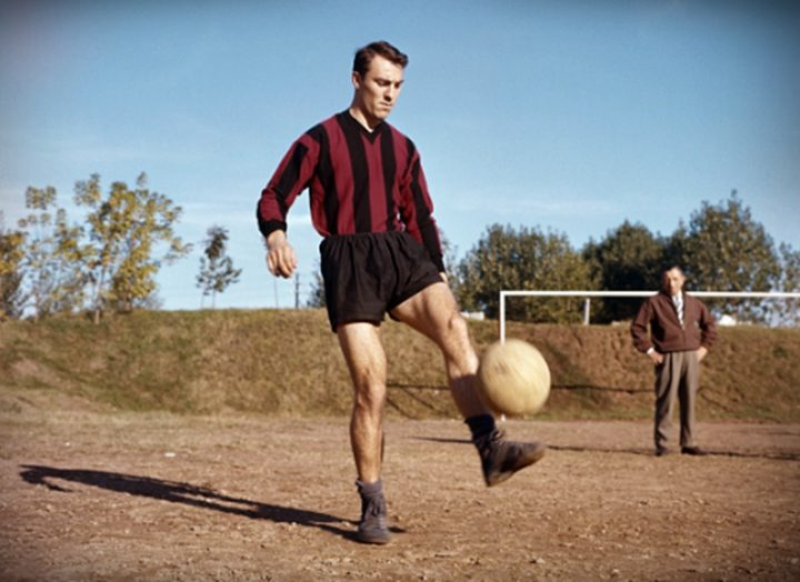 greaves-milan-wp