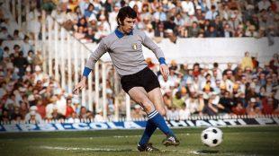 Dino-Zoff-